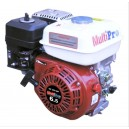 MULTIPRO GASOLINE ENGINE GE200-MP